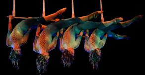 Afetado por coronavírus, Cirque du Soleil avalia opções, incluindo decretar falência
