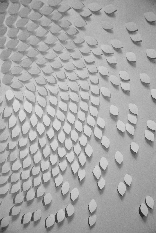 universe, entropy paper cut, spiral