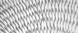 sun leaves paper art 3D hand cut