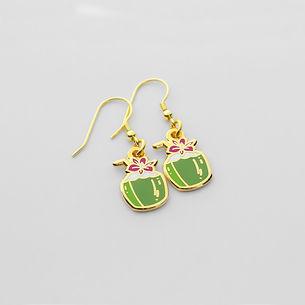 Beach - Coconut Earrings.jpg