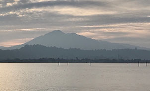 Mt. Tam in Grey