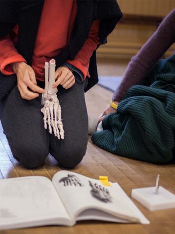 BMC skeleton workshop foot NOV16.jpg