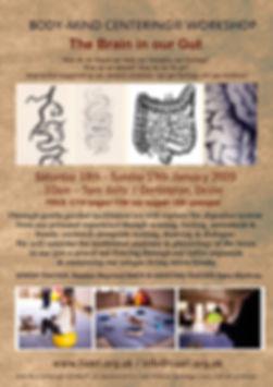 Body-Mind_Centering®__Workshop_-_The_Bra
