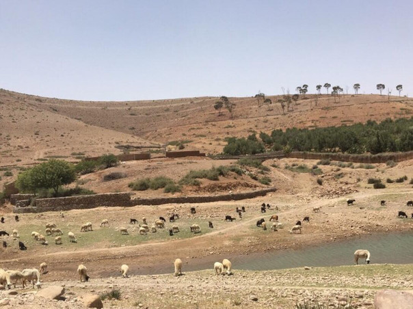 Lac Takerkoust Marrakech