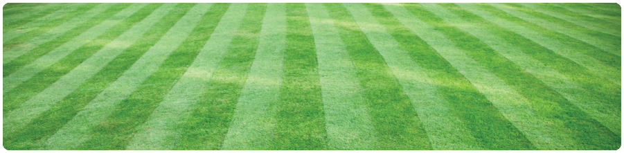 lawn-grass-cutting-banner