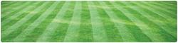 lawn-grass-cutting-banner