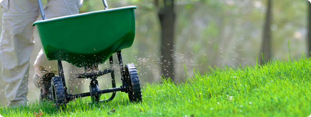 lawncare_fertilization