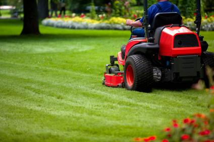image_winter_lawn_preparation