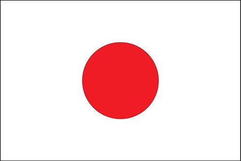 Summer Olympics in Tokyo
