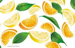 Citrus Dream