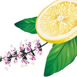 Tulsi&lemon