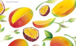 10_tetley_mango_z