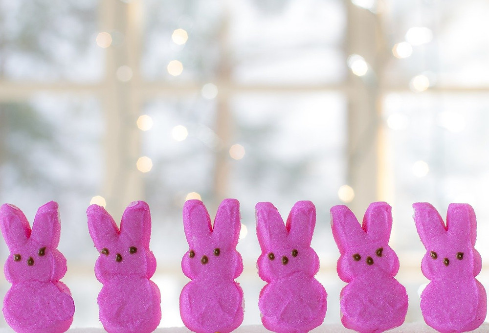 A row of pink Easter bunny peeps