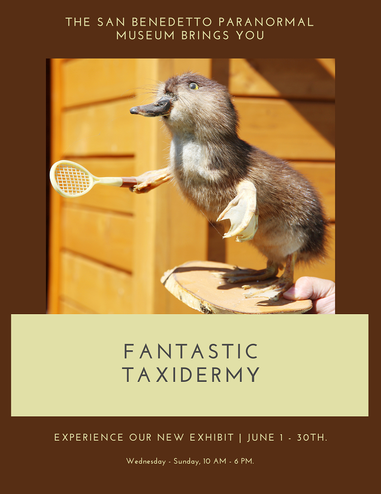 Flyer: The San Benedetto Paranormal Museum brings you Fantastic Taxidermy! Experience our new exhibit, June 1 - June 30. Photo of gopher duck playing tennis
