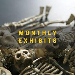 monthly exhibits.jpg