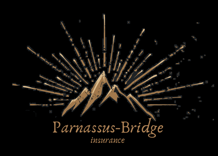 Parnassus-Bridge Insurance logo