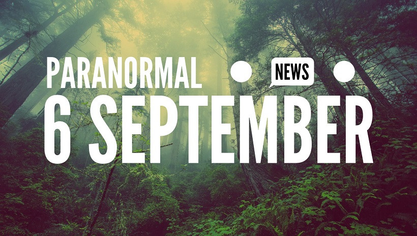 Foggy forest image and headline for paranormal news