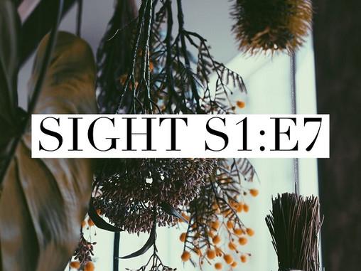 Sight - S1 : E7