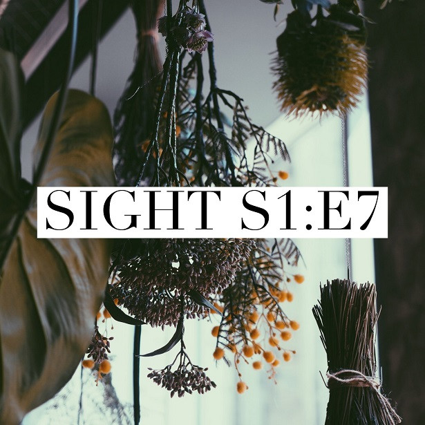 Sight - S1:E7 - Lenore's attic