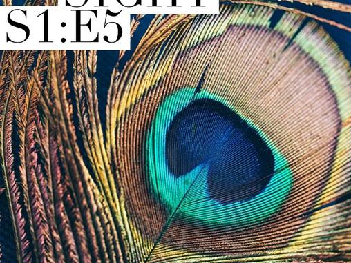 Sight - S1 : E5