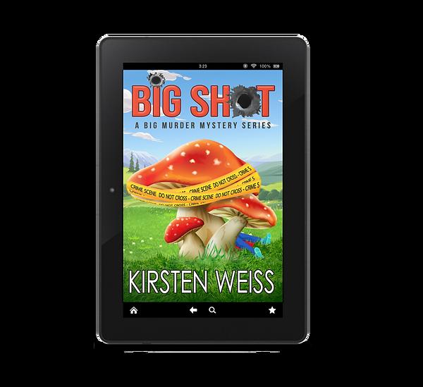 Big Shot ebook.png