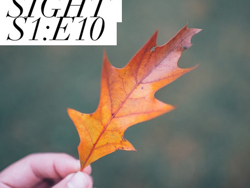 Sight - S1 : E10