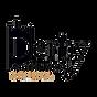 dcs_logo.png