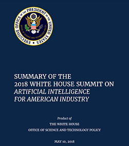 Summary-Report-of-White-House-AI-Summit.
