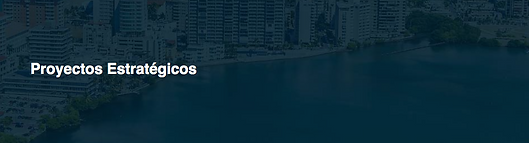 Proyectos Estratégicos Puerto Rico.png