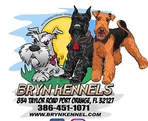 brynlogoschnauzer-Recovered.jpg
