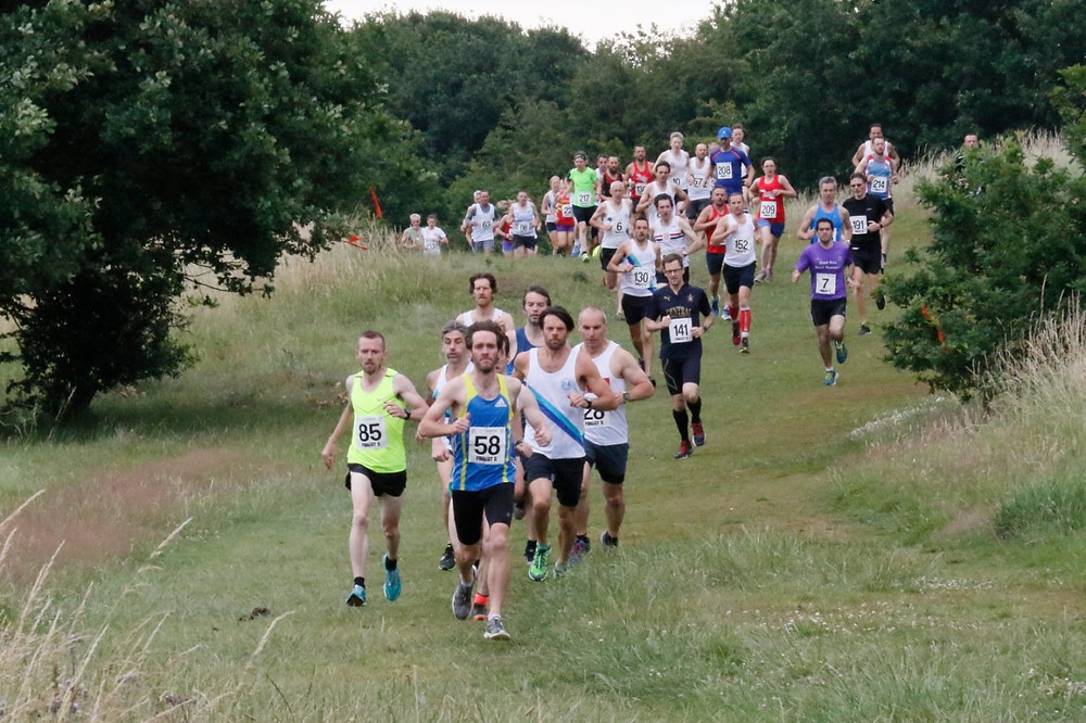 Orion Harriers' Forest Five