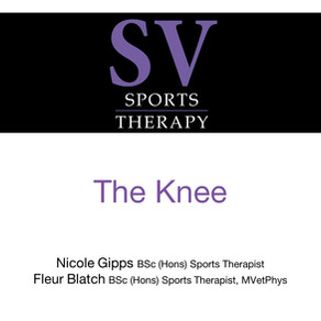 Knee injuries and some exercises that can help to strengthen the joint and reduce injury