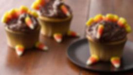 cupcake turkey.jpg