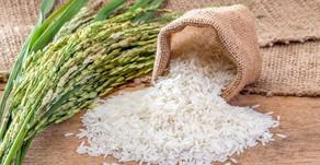 Este es el mejor arroz para cada plato dependiendo de qué quieras cocinar.