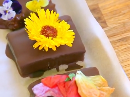Flower Powered Protein Bars