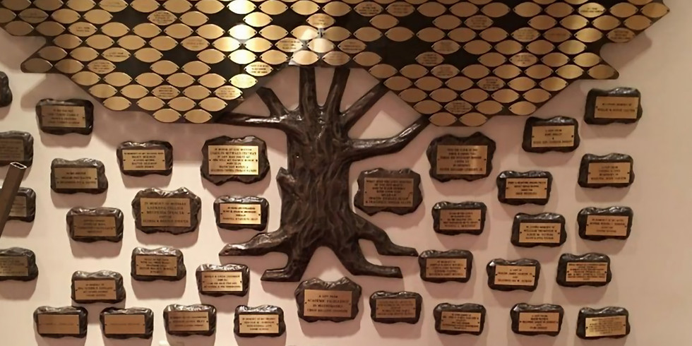 RECOGNITION TREE of LIFE