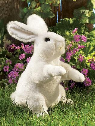 FM2868 - White Rabbit Standing