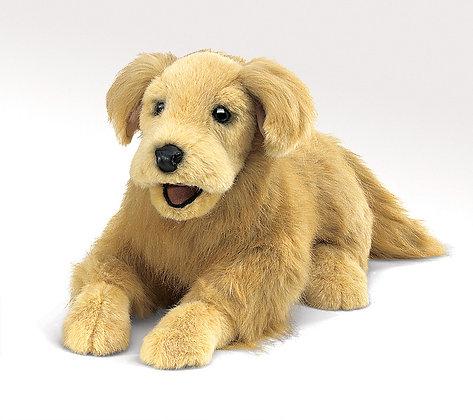 FM2998 - Golden Retriever Puppet