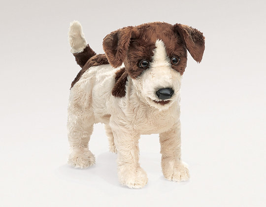 FM2848 - Jack Russell Smooth Coat