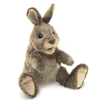 FM3130 - Small Cottontail Rabbit