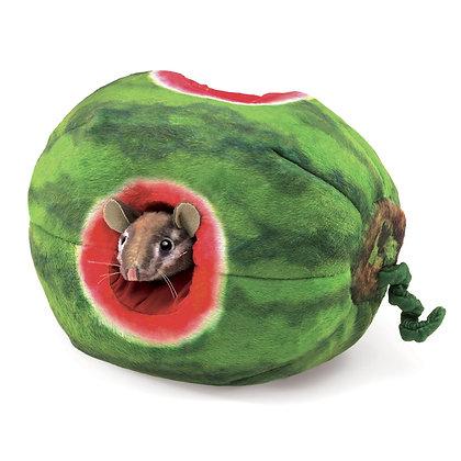 FM3128 - Chipmunk in a Watermelon