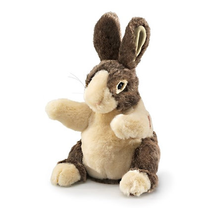 FM2571 - Baby Dutch Rabbit