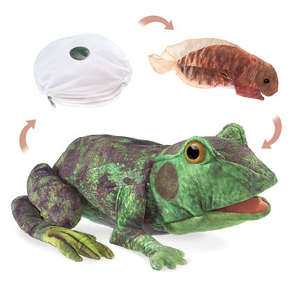 FM3115 - Frog LifeCycle Puppet
