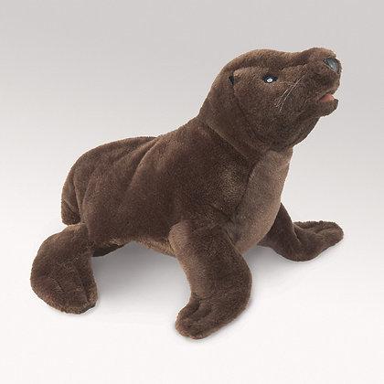 FM3052 - Sea Lion Pup