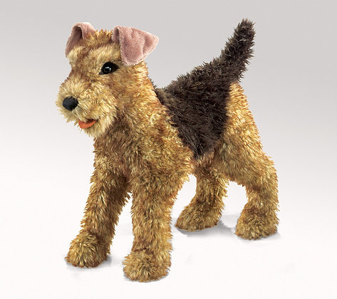FM2993 - Airedale Terrier