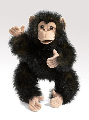FM2877 - Baby Chimpanzee