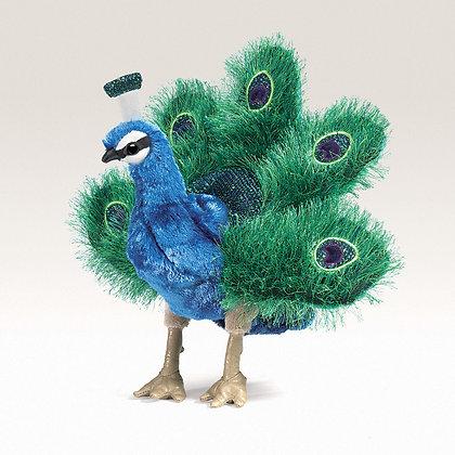 FM2834 - Small Peacock