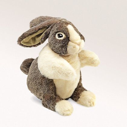 FM2568 - Dutch Rabbit