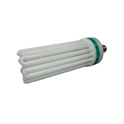 Compact Fluorescence Lamps CFL's