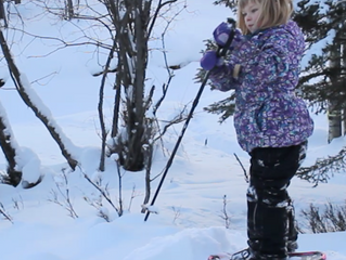 Snowshoeing in the Alaska Backcountry